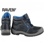 raven_s3
